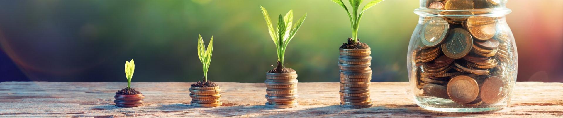 plantjes die groeien op stapeltjes geld en de stapels worden steeds groter